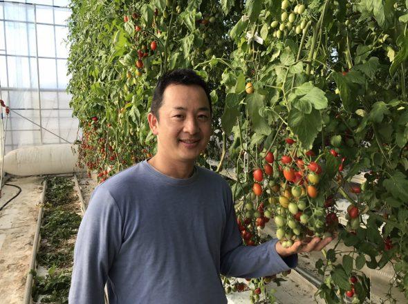 導入事例:農業生産法人 株式会社井出トマト農園様の場合 (施設野菜 製造/加工/販売)